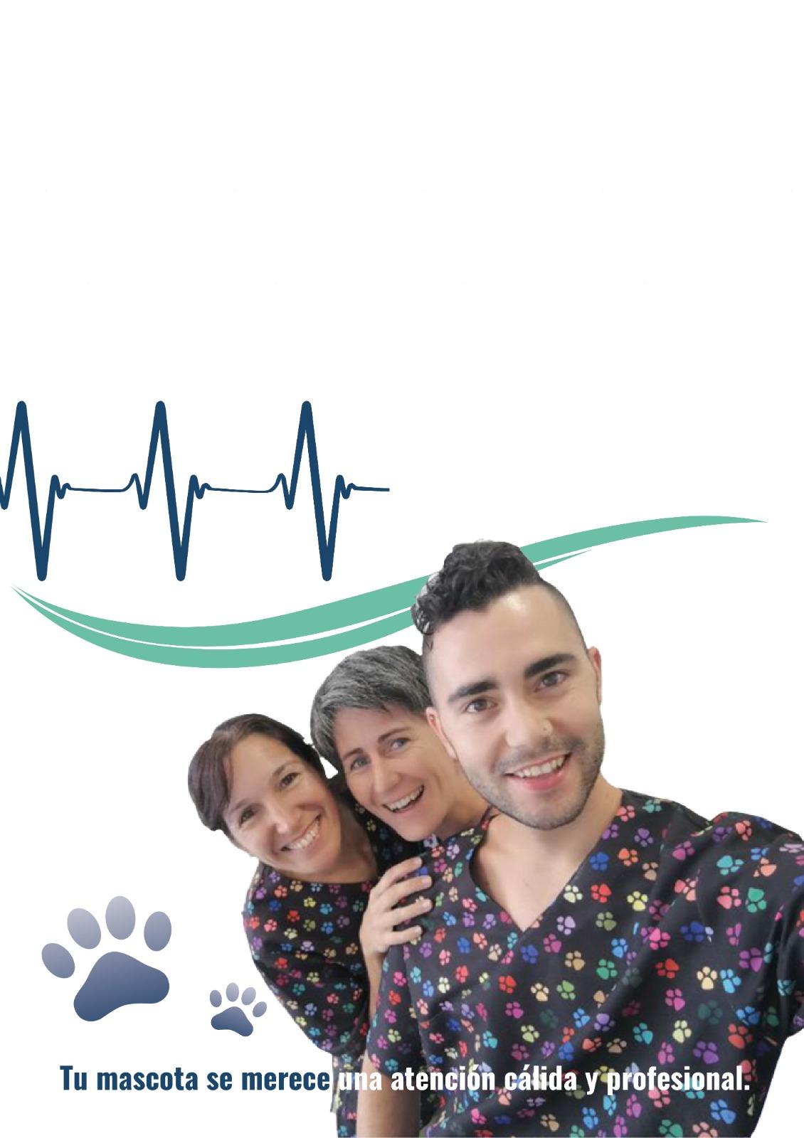 veterinario-atarfe